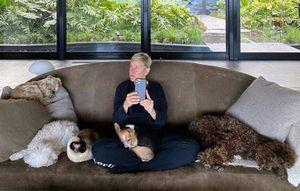 El Show de Ellen DeGeneres estará bajo investigación por rumores atropello laboral