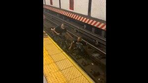 Herói do dia: Homem salta em trilho de metrô para salvar cadeirante; veja vídeo