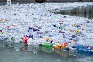 Ambiente: ¿todavía estamos a tiempo de detener la contaminación por plástico?