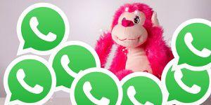 WhatsApp: el mejor truco para que nunca te ignoren