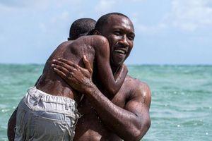 Películas de Netflix que debes ver si amaste Wonder, dejan grandes lecciones de superación