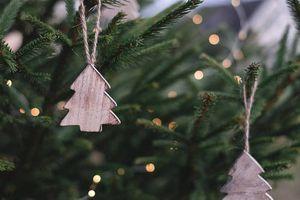 ¡Huele a Navidad! ¿Qué es y cómo se produce ese icónico olor?
