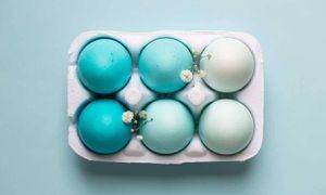 ¿Huevos azules? Existen gallinas que sí los ponen de forma natural y no tienen nada de malo