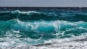 Día Mundial de los Océanos: cómo es que el cambio climático los amenaza