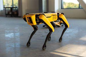 Boston Dynamics le entregó su perro robot a MythBusters para que lo entrene