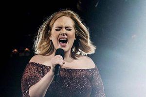 Así ha cambiado el rostro de Adele desde que inició su dieta y comenzó a bajar de peso
