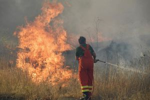 Italia arde por incendios forestales; ola de calor alcanza 48 grados