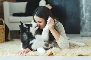 Conoce las ventajas y desventajas de dormir con tu perro y las precauciones que debes tener