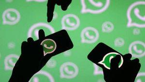 WhatsApp: los grupos dentro de la aplicación no son privados