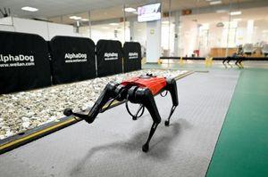 Conoce a los AlphaDog: perros robóticos con inteligencia artificial y conectividad de internet a velocidad 5G