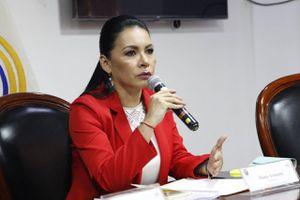 """Presidenta del CNE: """"Estamos listos para colaborar con la vacunación en Ecuador"""""""