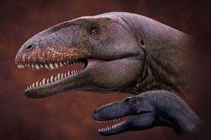 Investigadores descubren fósil de dinosaurio siete millones de años más antiguo y más aterrador que el T.Rex, con dientes de tiburón