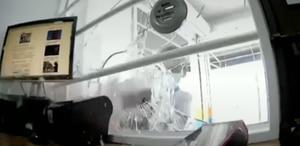 ¡Partieron el vidrio con un combo! Captan intento de robo en agencia multiservicios en Machala