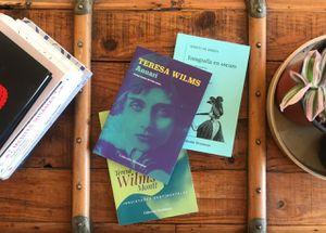 Poesía escrita por mujeres: recuperando el canon