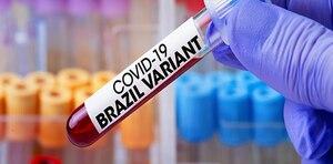Científicos descubren una nueva variante del coronavirus en Brasil. ¿Más infecciosa?