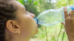 """El """"preocupante"""" hallazgo de partículas de plástico en botellas de agua de 11 marcas diferentes"""
