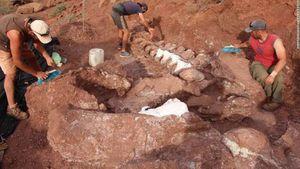 Dinosaurios: encuentran en Argentina fósiles del animal prehistórico más grande de la historia