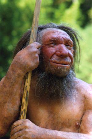 Tal vez heredamos más genes de los neandertales de los que pensábamos