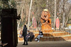 Pololo de la joven guía muerta  por un tigre en safari de Rancagua acusa negligencia del parque