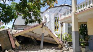 Tragedia: cifran en 29 los fallecidos tras terremoto en Haití