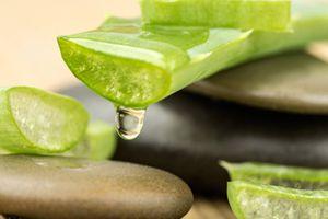 Mascarilla de aloe vera y té verde para acabar con la caspa
