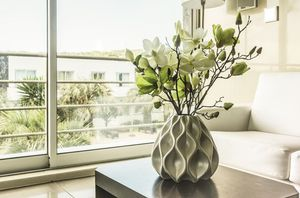Los mejores sitios para colocar plantas en casa y que atraigan las energías positivas